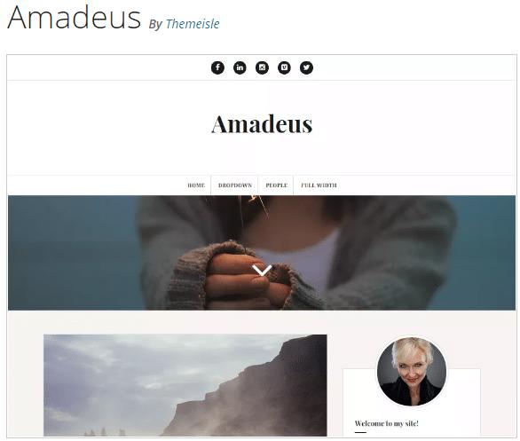 Amadeus Free premium Theme