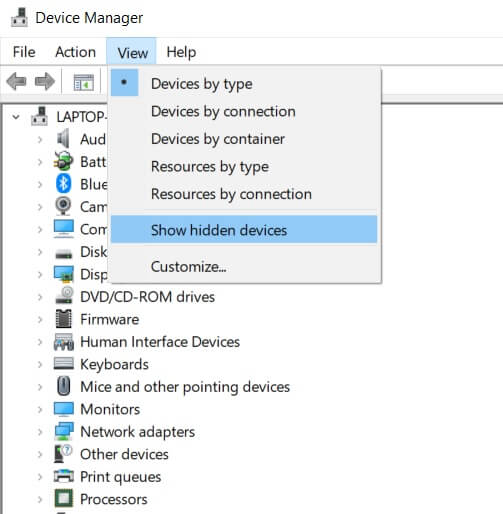 Click on view then select Show Hidden Devices