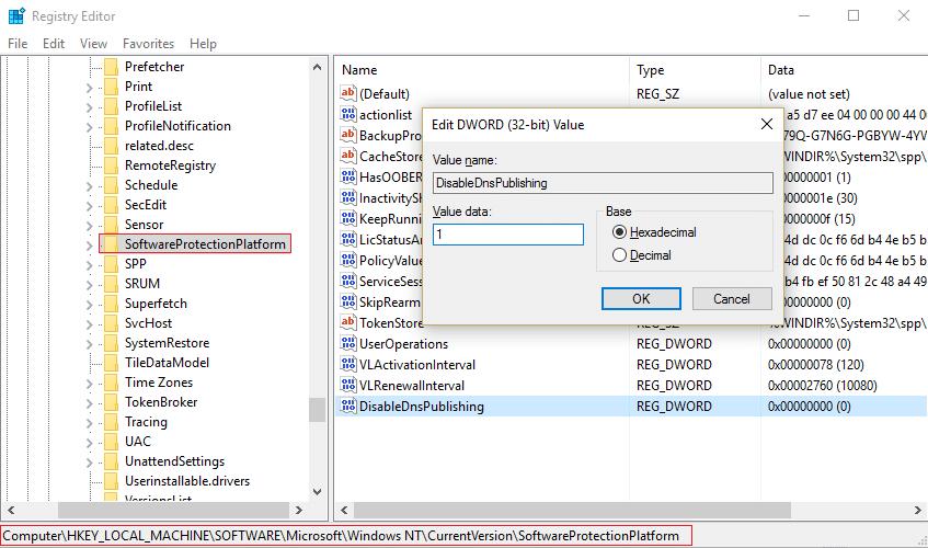 SoftwareProtectionPlatform DiableDnsPublishing