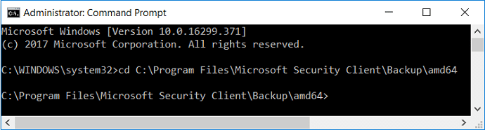 cd the Microsoft Security Client directory