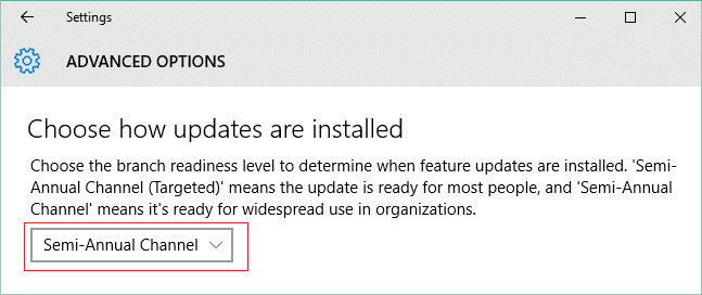 Under Choose when updates are installed select Semi-Annual Channel