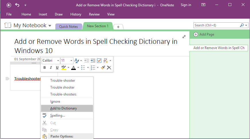 Add Highlighted Misspelled Words to Spell Checking Dictionary