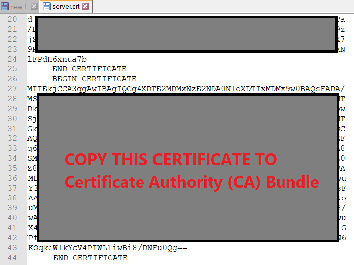 Copy the second part of the Certificate from the .crt file (Security Certificate)