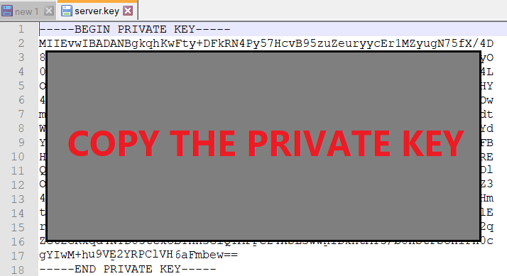 Open the server.key file with notepad and copy its content