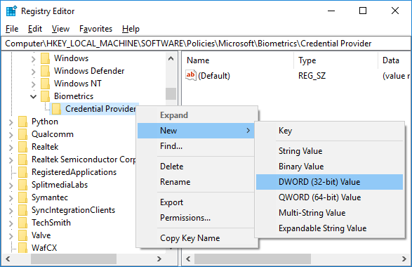 Right-click on Credential Provider then select New then DWORD (32-bit) Value