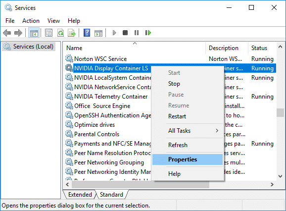 Right-click on NVIDIA Display Container LS then select Properties