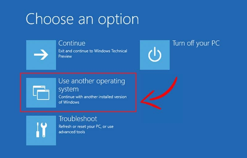 From Choose an option screen selectUse another operating system