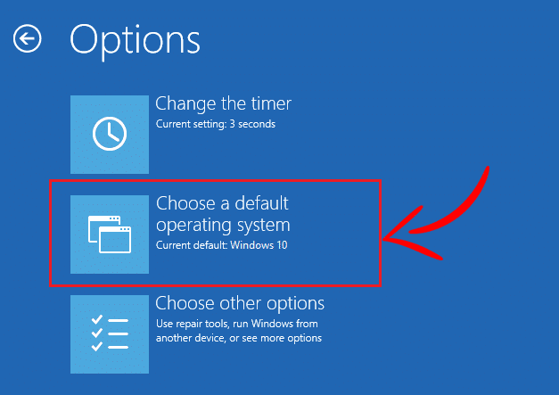"""Now from the Options window select """"Choose a default operating system"""""""