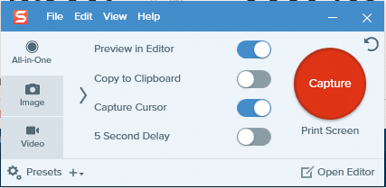 Open the window that you want a screenshot of and launch Snagit