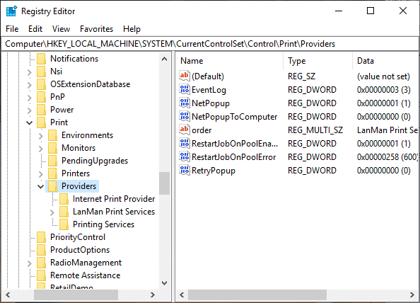 Under Providersyou will find two default sub-keys which areLanMan Print ServicesandInternet Print Provider
