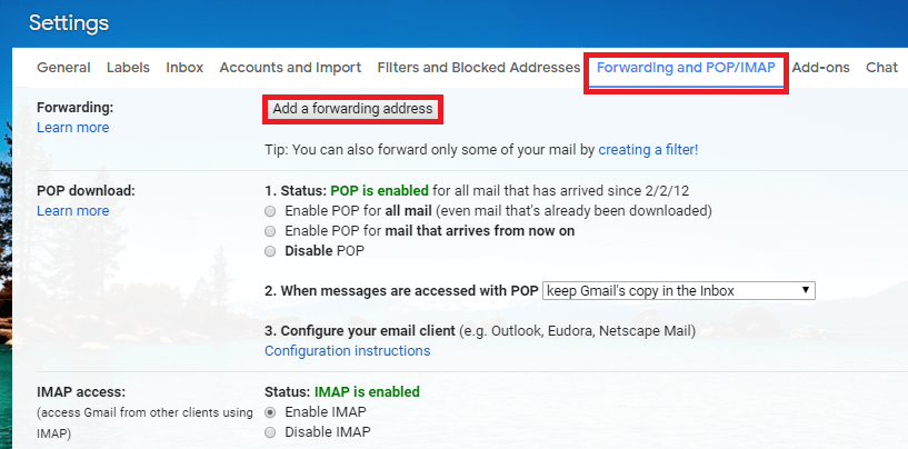 At the top, you will find the 'Forwarding' section. Click on 'Add a forwarding address'.