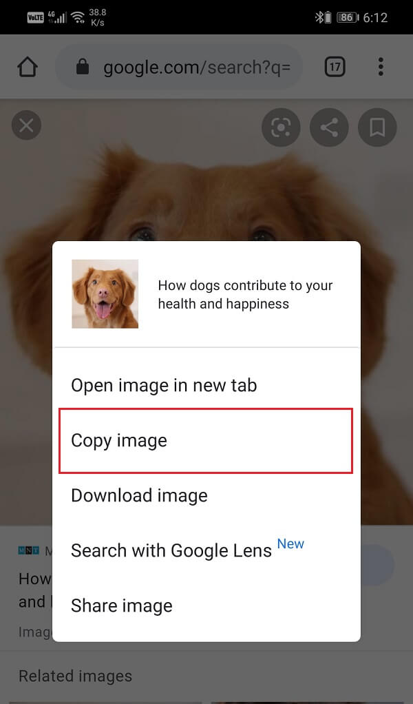 Select the Copy image option