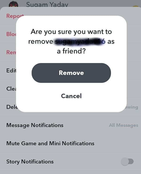 Tap Remove to confirm | How to Delete (or Block) Friends on Snapchat