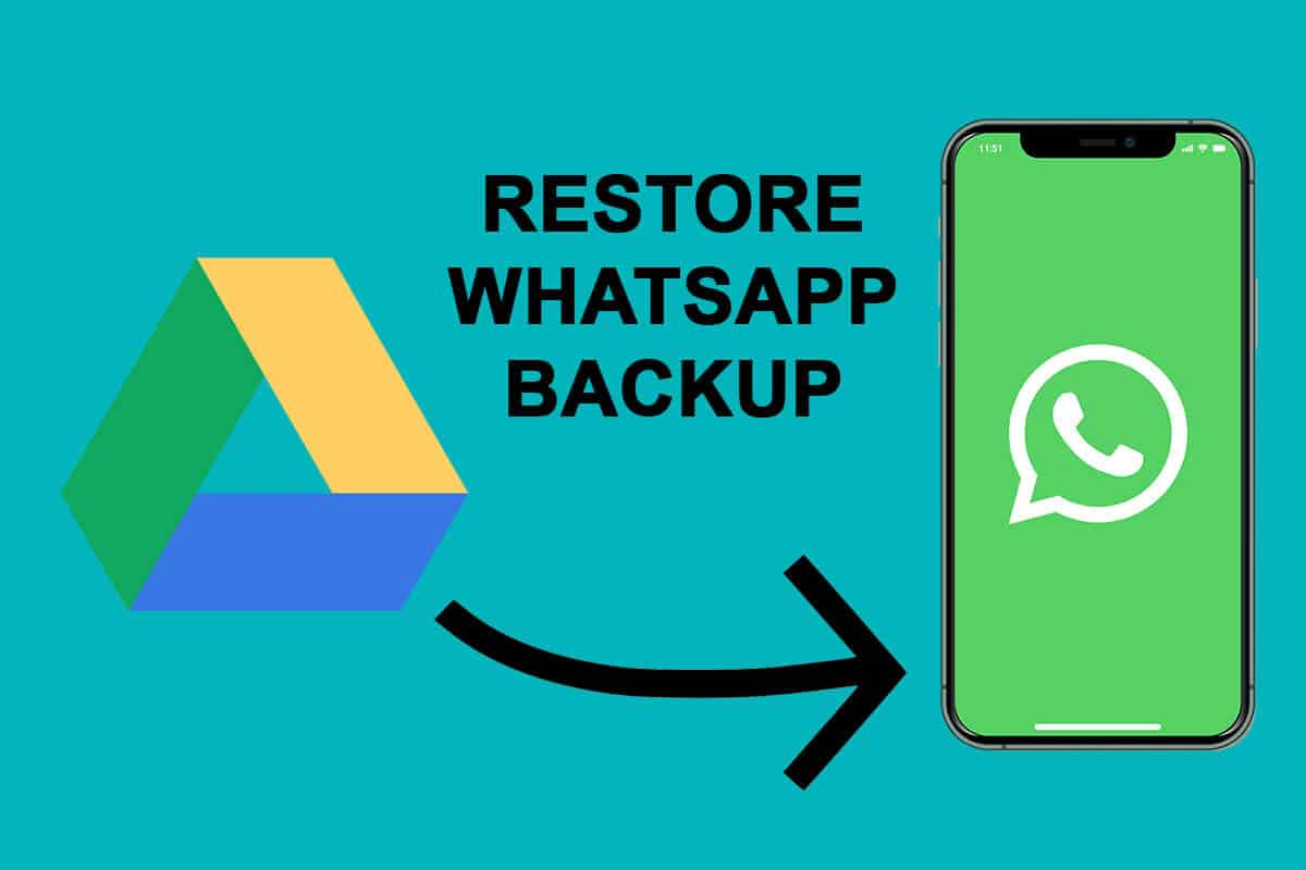 How to Restore Whatsapp Backup From Google Drive to iPhone   TechCult