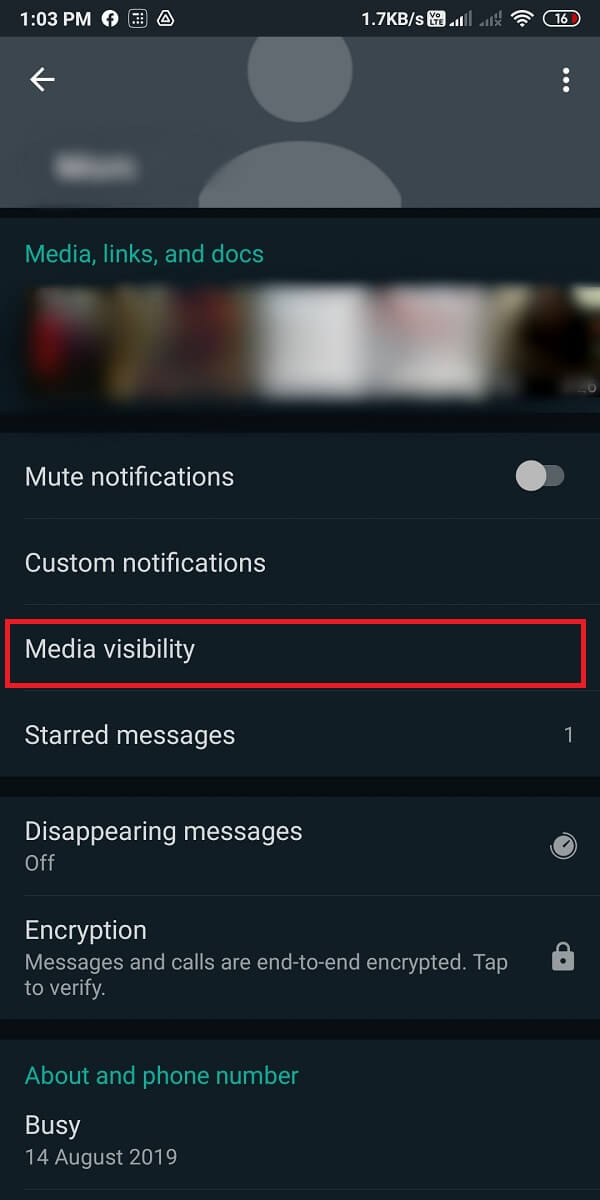Tap on Media visibility.