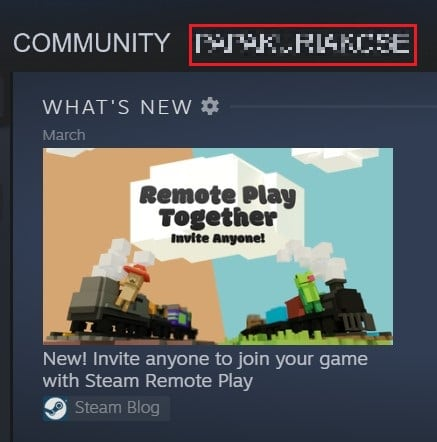 Click on your Steam profile username | How to Hide Steam Activity from Friends