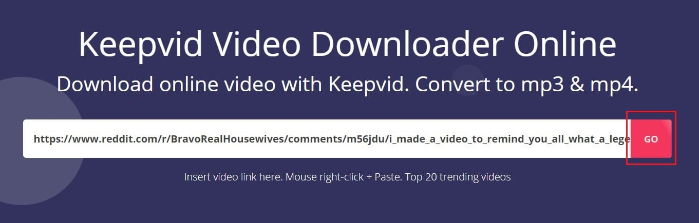 Paste the link in KEEPVid and click on Go
